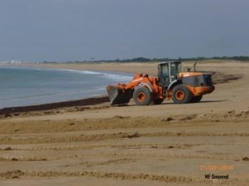 ratissage de la plage de Sion l'Océan en vue du grand prix des meules bleues-09/2016
