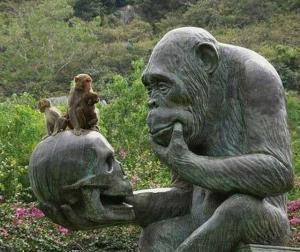 Примат должен открыть свой разум фантазии оставаясь в рамках логики