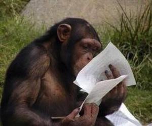 Без систематического чтение стать приматом невозможно