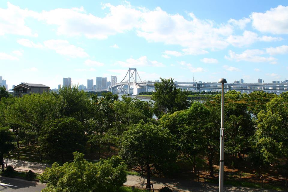 Best Activities to do in Tokyo