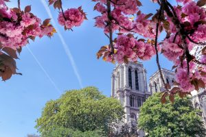 How To Enjoy Paris In Spring: 5 Things To Do
