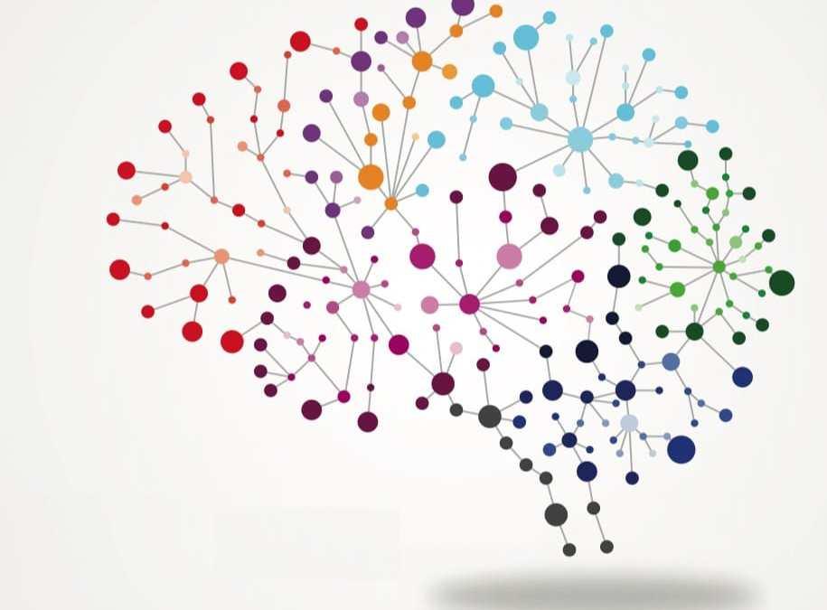 Neuroplasticity and Mindfulness