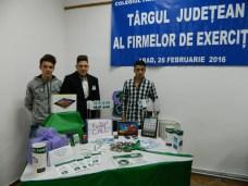 TJFF-IV1