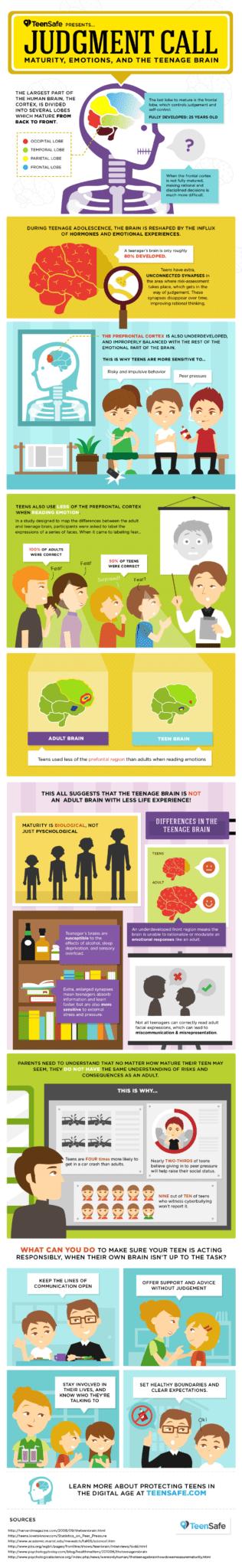 teen-brain-infographic