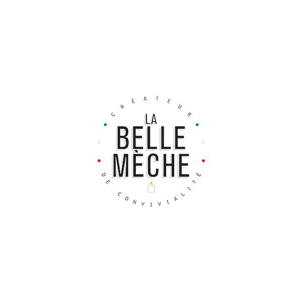 logo-belle-meche