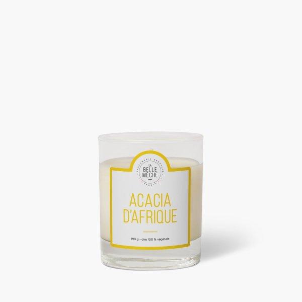 Bougie parfumée Acacia d'Afrique