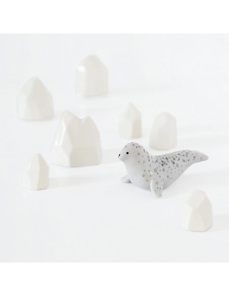 phoque-gris