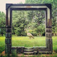 Nel parco circostante il Teatro Puccini ci sono moltissime opere d'arte, alcune bizzare come questa.
