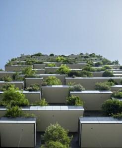 etude de cas immobilier inbound marketing
