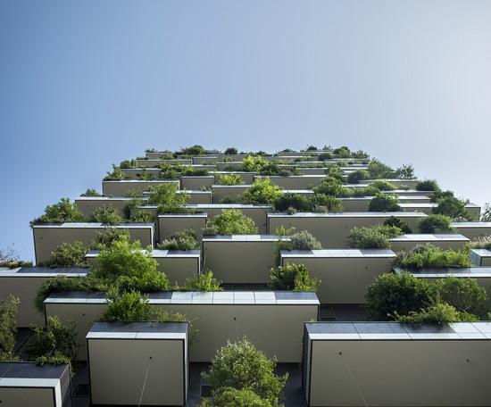etude de cas inbound marketing immobilier