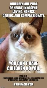 Parenting-GRUMPY-CAT