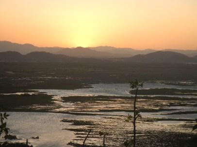 Palo Verde Wetlands