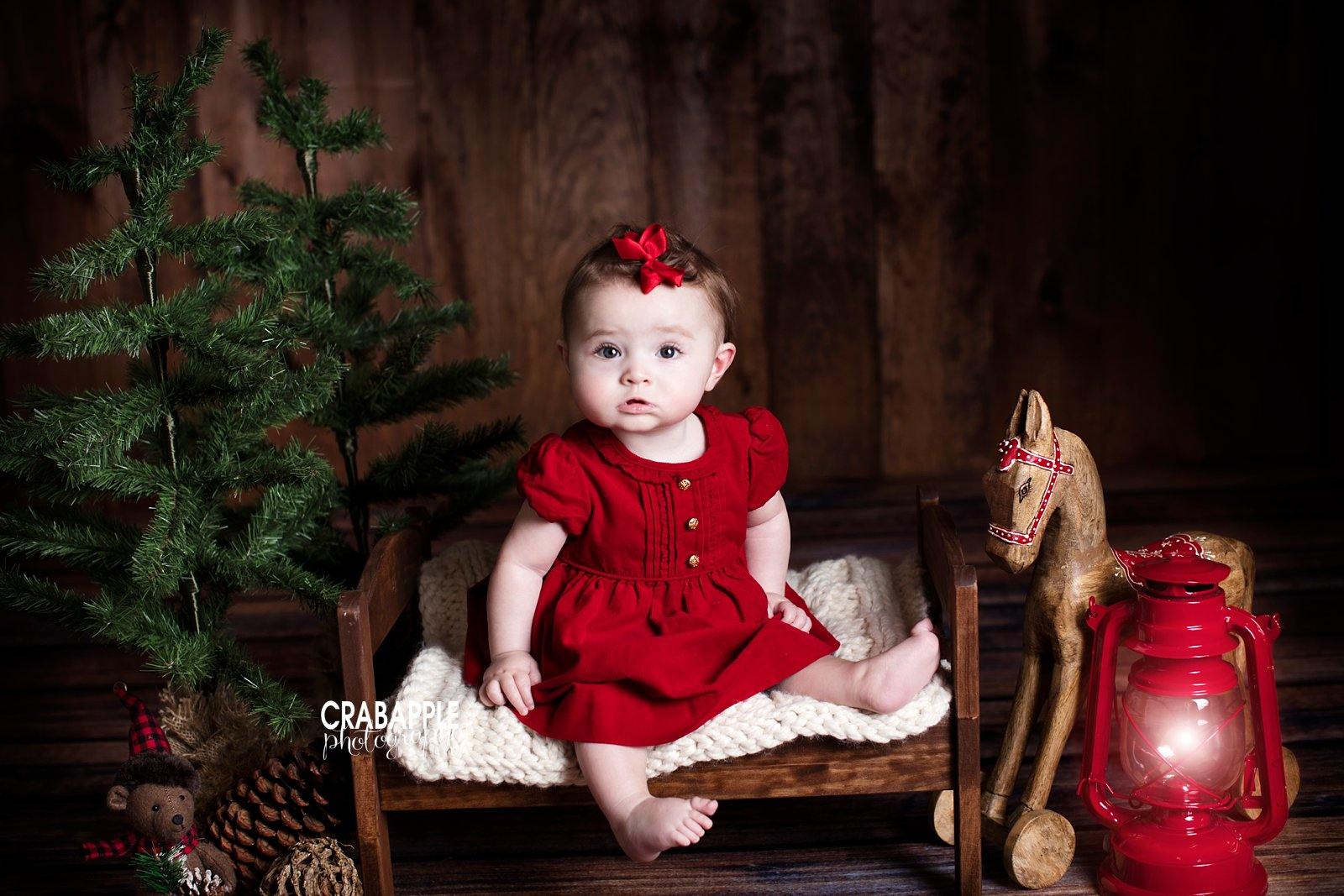 Christmas Themed Portraits Studio Sessions Crabapple