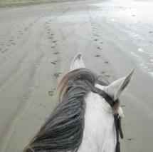 Raffeah on the beach.