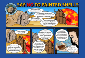 Say NO to painted shells