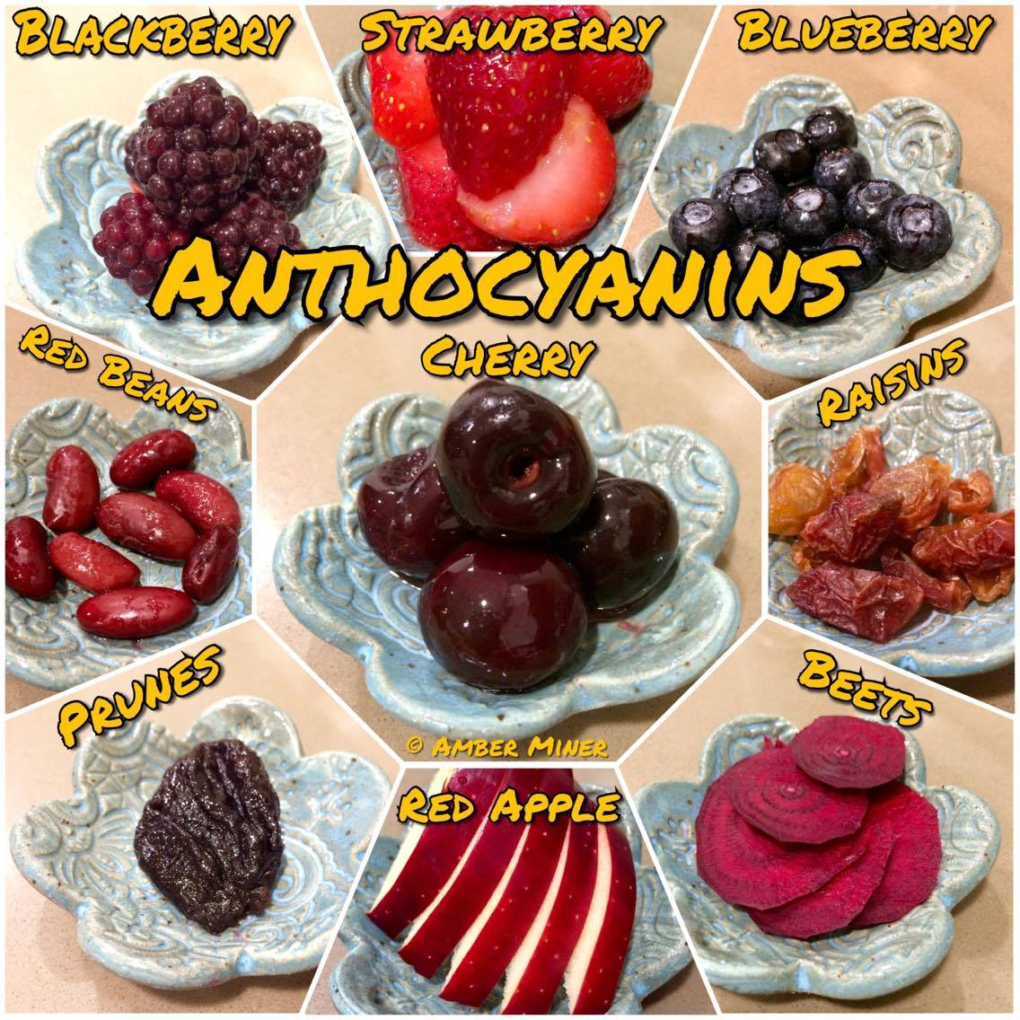 Anthocyanins for hermit crabs