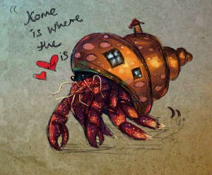 A change of housing is easy for a hermit crab but for people it takes a bit more planning! Photo credit Volapardus http://volapardus.tumblr.com/