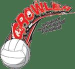 growler-volleyball-tournament