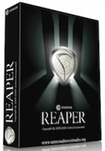 Reaper 5.90 Crack + License Key Free Download Full Version