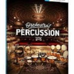 orchestral percussion instruments
