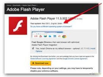 Adobe Flash Player 31.0.0.153 Crack