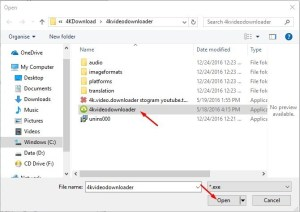 4K Video Downloader 4.7.3.2742 Crack
