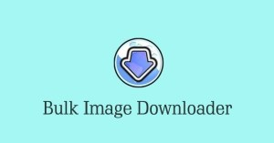 Bulk Image Downloader 5.84.0 Crack Registration Code Download