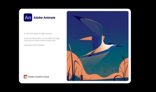 Adobe Animate 2021 v21.0.0.35450 Crack With Keygen Free Download