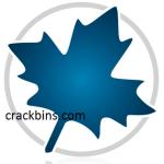 Maplesoft Maple Crack