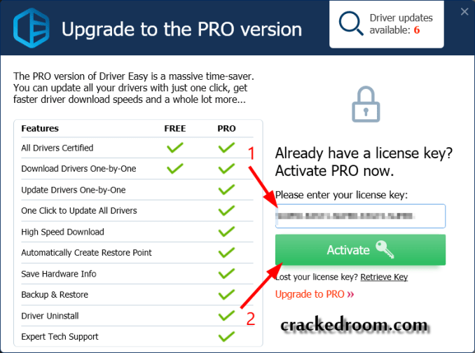 Driver Easy Pro 5.6.12.37077 Crack With License Key 2020