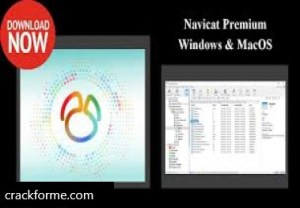 Navicat Premium 15.0.26 Crack + Keygen (Latest) Free Download