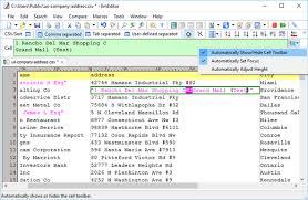 EmEditor Professional 18.7.0 Crack