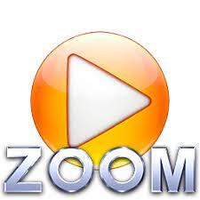 Zoom Crack