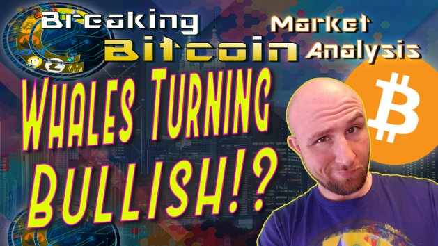 text whales turning bullish? next to justin's unsure smug face with graphic background and bitcoin logo with show title breaking bitcoin at top and CC logo