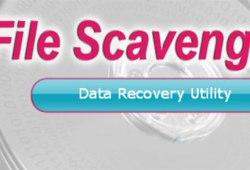 File Scavenger Cracked