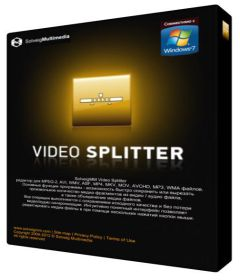 SolveigMM Video Splitter Business Edition 6.1.1707.19