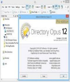 Directory Opus 12.12 Build 6961 incl Patch