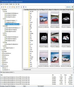 Extreme Picture Finder 3.43.1.0 + patch