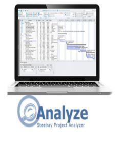 Steelray Project Analyzer incl Keygen