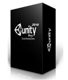 Unity Professional  2019.2.15f1 + patch