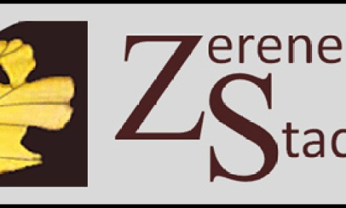 Zerene Stacker Pro patch free download