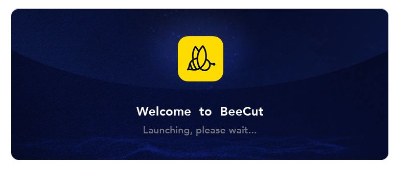 BeeCut incl patch free download