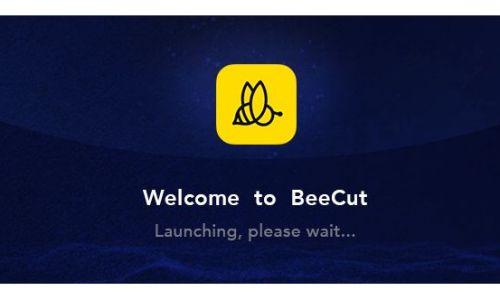 BeeCut incl Patch