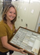 Working on the Water Beetle Collection at the Field Museum of Natural History.