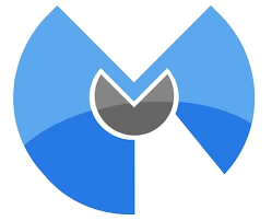 Malwarebytes Premium 3.7.1 Crack + License Key ! [Latest]