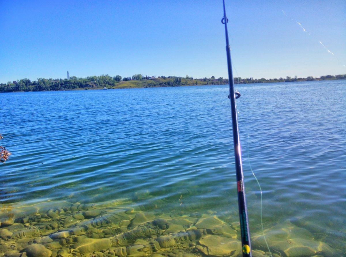Fishing Around Calgary, Glenmore Reservoir Fishing