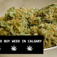 Where to buy marijuana / cannabis / weed in Calgary
