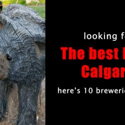 The best IPA in Calgary