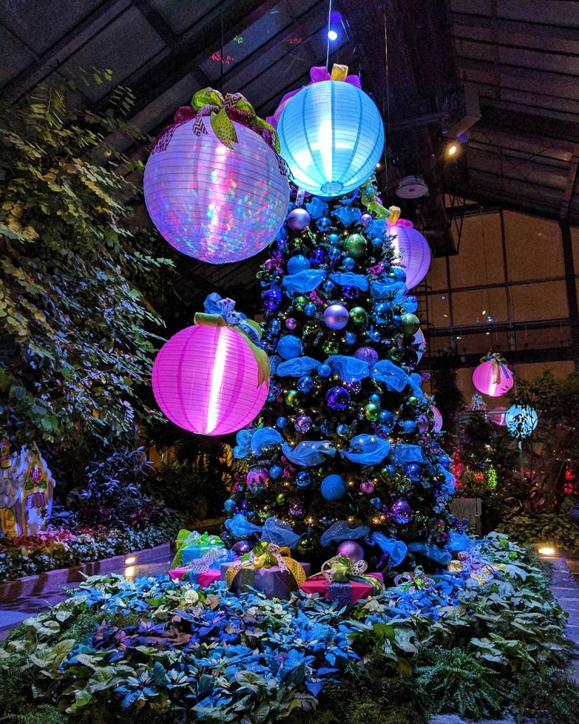 Calgary Zoo Lights 2016 Zooville