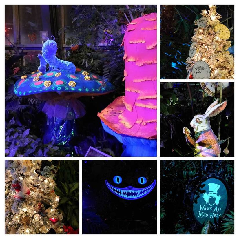 Calgary Zoo Lights Alice in Wonderland